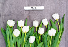 Tio vita tulpan vid en ferie av våren Royaltyfri Foto