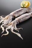 tioarmad bläckfisk arkivfoton