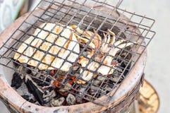 Tioarmad bläckfiskgaller på ugnen royaltyfri foto