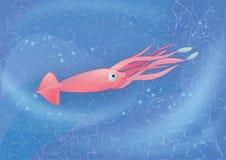 Tioarmade bläckfisken simmar i havet Arkivbilder
