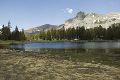 Tioga Lake Stock Image