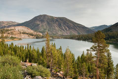 Tioga lake in yosemite national park Royalty Free Stock Photography