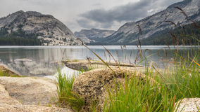 Tioga Lake Yosemite National Park California US Stock Photo