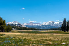 Tioga Pass. View from the road on tioga pass Stock Images