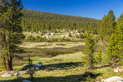 Tioga Pass Stock Photo