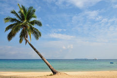 Tioman海岛,马来西亚 库存图片