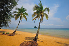 Tioman海岛,马来西亚 免版税库存图片
