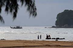 Tioman island, Malaysia Royalty Free Stock Photography