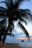 Tioman island, Malaysia Royalty Free Stock Images