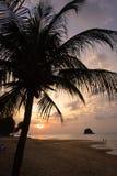 Tioman island, Malaysia Stock Photo