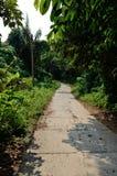 Tioman island Stock Photos
