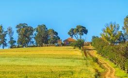 Tipaza county in Algeria Stock Photography