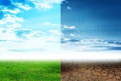 2 tipes природы Стоковые Фотографии RF