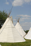 Tipi 2. A group of tipis (teepees) sits in a meadow in the afternoon sun Royalty Free Stock Image