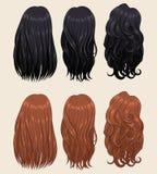 Tipi 2 dei capelli Fotografia Stock Libera da Diritti