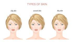 Tipi della pelle del fronte Vettore Fotografia Stock
