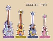 Tipi delle ukulele illustrazione vettoriale