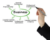 Tipi di affari immagini stock libere da diritti