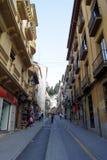 Tipi di Alhambra Fotografie Stock Libere da Diritti