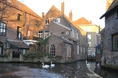 Tipi di Bruges Il Belgio, Fotografia Stock Libera da Diritti