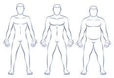 Tipi di corpo Mesomorph Endomorph dell'ectomorfo Immagini Stock