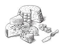 Tipi di fabbricazione del formaggio vari di insiemi del formaggio degli schizzi di vettore Immagine Stock