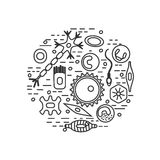 Tipi differenti della cellula umana Immagini Stock