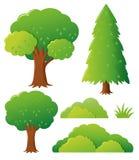 Tipi differenti di alberi Fotografia Stock Libera da Diritti