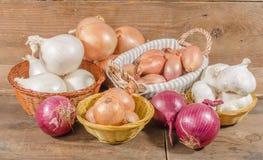 Tipi differenti di cipolle, di aglio e di scalogni Fotografie Stock Libere da Diritti