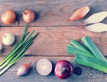 Tipi differenti di cipolle su un fondo di legno approssimativo immagine stock libera da diritti