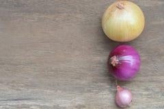 Tipi differenti di cipolle sui precedenti di legno Immagine Stock Libera da Diritti