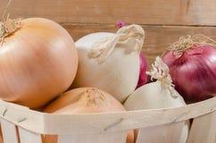 Tipi differenti di cipolle in un canestro Fotografia Stock