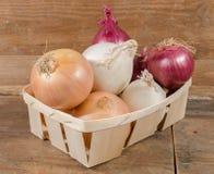 Tipi differenti di cipolle in un canestro Fotografie Stock