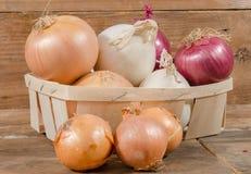 Tipi differenti di cipolle in un canestro Immagini Stock