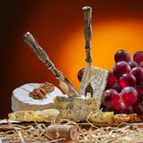 Tipi differenti di formaggio, di coltello d'annata e di forcelle Fotografia Stock