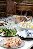 Tipi differenti di insalate per intrattenere di estate immagini stock libere da diritti