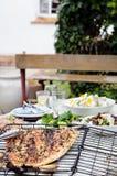 Tipi differenti di insalate per intrattenere di estate fotografia stock libera da diritti