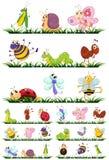 Tipi differenti di insetti su erba royalty illustrazione gratis