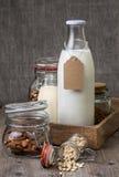 Tipi differenti di latti del dado Fotografia Stock
