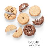 Tipi differenti di modelli del cioccolato della fragola del biscotto dei biscotti Immagini Stock Libere da Diritti