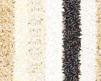Tipi differenti di modelli senza cuciture del riso Basmati, selvaggio, gelsomino, marrone lungo, arborio, sushi Sei bande Fotografia Stock