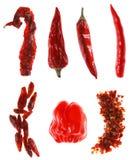 Tipi differenti di peperoncini rossi rossi Immagini Stock