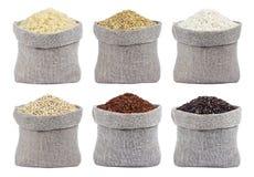 Tipi differenti di risi isolati su fondo bianco fotografie stock libere da diritti