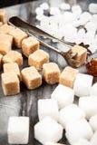 Tipi differenti di zuccheri Immagini Stock