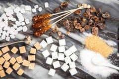 Tipi differenti di zuccheri Fotografia Stock Libera da Diritti
