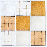 Tipi e forme differenti di zuccheri Fotografie Stock