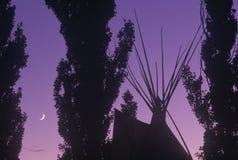 Tipi et arbres silhouettés contre le ciel et le croissant de lune pourpres Image libre de droits