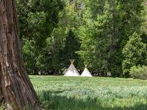 Tipi som campar i Sierra Nevada Royaltyfria Bilder