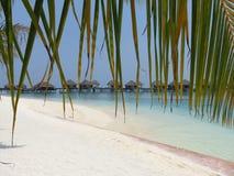 Tipical-Ansicht von Malediven Stockbilder