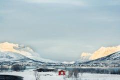 Tipical połowu czerwoni domy w schronieniu na Lofoten wyspach, Norwa zdjęcie stock
